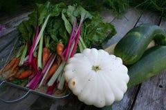Calabacín, calabaza, zanahorias, cardo imagenes de archivo
