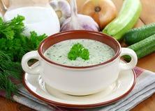 Calabacín frío vegetariano de la sopa Imagen de archivo