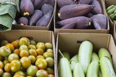Calabacín, tomates, flores del plátano y hojas Fotos de archivo libres de regalías