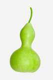 Calabash - Bottle Gourd. The light green Calabash or Chinese Bottle Gourd is used by many cultures around the world for many different purposes (food, drink royalty free stock images