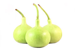 Calabash, Bottle Gourd Royalty Free Stock Photo