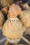 Calabash Stock Photo