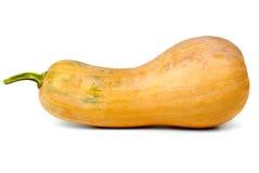 Calabash pumpkin Stock Images