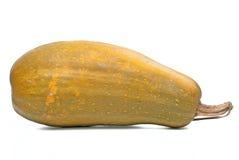Calabash pumpkin Royalty Free Stock Photography