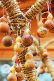 Calabash tree Korea Royalty Free Stock Photos