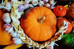 Calabaza, ajo y maíz Fotos de archivo libres de regalías