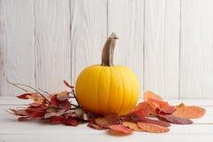 Calabaza amarilla brillante en hojas de otoño Imagen de archivo