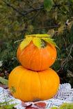 Calabaza amarilla para el día de fiesta Halloween al aire libre Imagenes de archivo