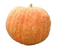Calabaza anaranjada aislada en el fondo blanco Foto de archivo libre de regalías