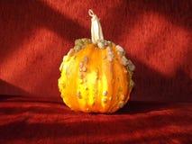 Calabaza anaranjada de Halloween y fondo rojo foto de archivo libre de regalías