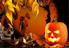 Calabaza anaranjada de Víspera de Todos los Santos en las hojas de otoño Imágenes de archivo libres de regalías