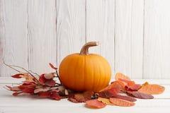 Calabaza anaranjada en hojas de otoño, decoración del día de fiesta Imagen de archivo