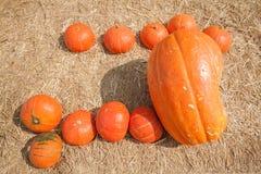 Calabaza anaranjada grande imagen de archivo libre de regalías