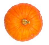 Calabaza anaranjada madura aislada Imagenes de archivo