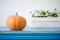 Calabaza anaranjada madura en una tabla azul Fotos de archivo libres de regalías