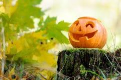 Calabaza asustadiza de Víspera de Todos los Santos en bosque del otoño fotografía de archivo libre de regalías