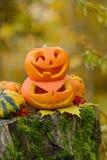 Calabaza asustadiza de Víspera de Todos los Santos en bosque del otoño Imagen de archivo libre de regalías