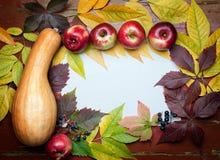 Calabaza blanca del fondo del otoño de la acción de gracias, manzanas, uvas y Foto de archivo libre de regalías