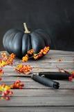 Calabaza coloreada negro con las bayas y las tijeras Imagen de archivo libre de regalías