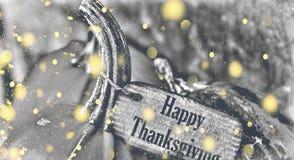 Calabaza con acción de gracias feliz de la etiqueta Imagen de archivo libre de regalías