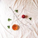 Calabaza con el ámbar y la manzana Fotos de archivo