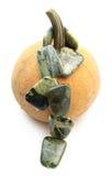 Calabaza con las gotas serpentinas de la piedra preciosa Foto de archivo libre de regalías