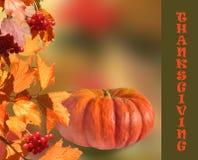 Calabaza con las hojas de la caída y las bayas rojas Fotografía de archivo