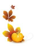 Calabaza con las hojas de otoño ilustración del vector
