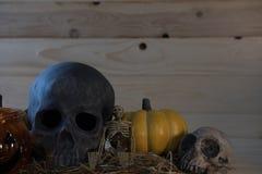 calabaza, cráneo, esqueleto en el fondo de madera para el holi de Halloween fotografía de archivo