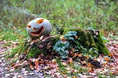 Calabaza de Halloween con humo en el bosque Imagen de archivo libre de regalías