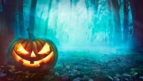 Calabaza de Halloween en bosque Fotografía de archivo libre de regalías