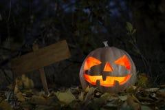 Calabaza de Halloween en la noche Imagen de archivo libre de regalías