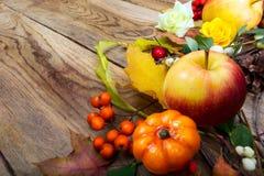 Calabaza de la acción de gracias, manzana, hojas, decoración del serbal, spac de la copia Imagen de archivo libre de regalías