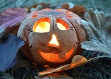 Calabaza de la palmatoria con una vela ardiente dentro, entre las hojas caidas, símbolo de Halloween imágenes de archivo libres de regalías