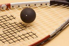 Calabaza de la raqueta Fotografía de archivo libre de regalías