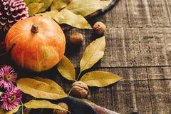 Calabaza de otoño con las hojas y nueces y dalias en el sc elegante Imagenes de archivo