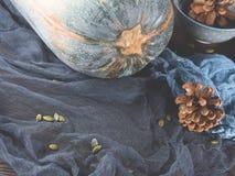 Calabaza de otoño en servilletas oscuras Copie el espacio Fotos de archivo