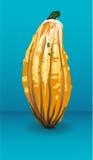 Calabaza decorativa Imagen de archivo
