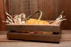 Calabaza en el granero de madera del cajón Fotografía de archivo libre de regalías