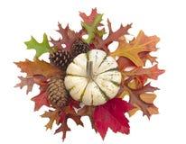 Calabaza en el racimo de hojas de la caída y de conos del pino Imagenes de archivo