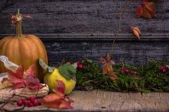 Calabaza, calabaza Fondo feliz del día de la acción de gracias Autumn Thanksgiving Pumpkins sobre el fondo de madera, aún-vida HO Foto de archivo
