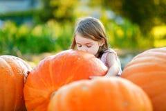Calabaza grande del abarcamiento adorable de la niña Imagen de archivo libre de regalías