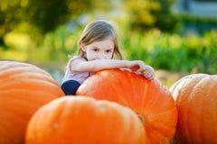 Calabaza grande del abarcamiento adorable de la niña Imagen de archivo