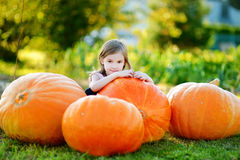 Calabaza grande del abarcamiento adorable de la niña Foto de archivo libre de regalías