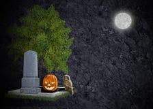 Calabaza grave del buho de la luna del fondo negro de víspera de Todos los Santos Imagen de archivo