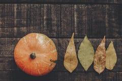 Calabaza hermosa con las hojas en el fondo de madera rústico, v superior Foto de archivo
