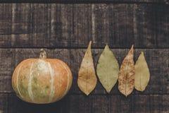 Calabaza hermosa con las hojas en el fondo de madera rústico, v superior Fotos de archivo