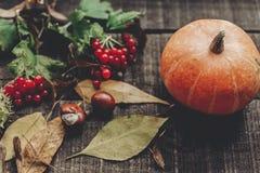Calabaza hermosa con las hojas y las bayas en backg de madera rústico Imagen de archivo libre de regalías
