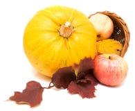 Calabaza, hojas de la caída y manzanas   Fotos de archivo libres de regalías