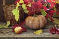Calabaza, hojas de otoño wattled de la cesta Fotografía de archivo libre de regalías